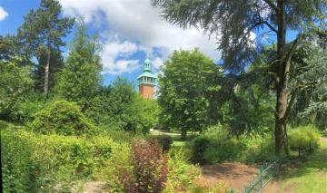 Summer greenery_