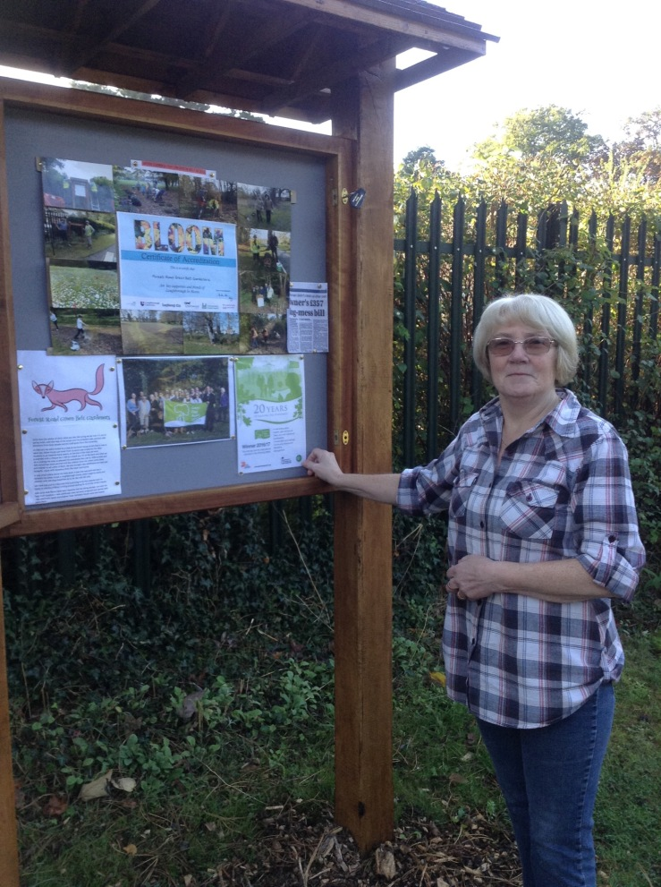 JANUARY 2017 - Pat Cook updates Forest Road information board.JPG