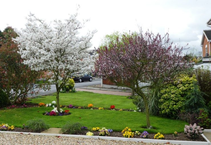 The Loughborough Echo, along with Loughborough in Bloom Community Participation Group deputy chair Mike Jones, launched Loughborough In Bloom's Best Spring Floral Displays competition.