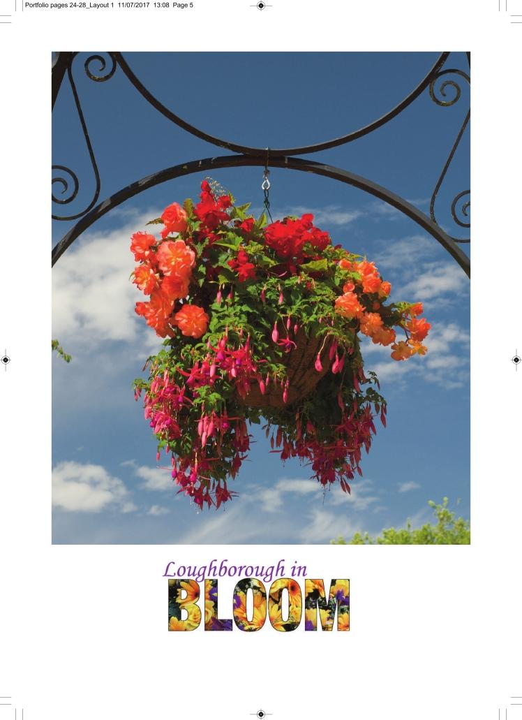 Bloom Portfolio 2017 - FINAL COPY_028